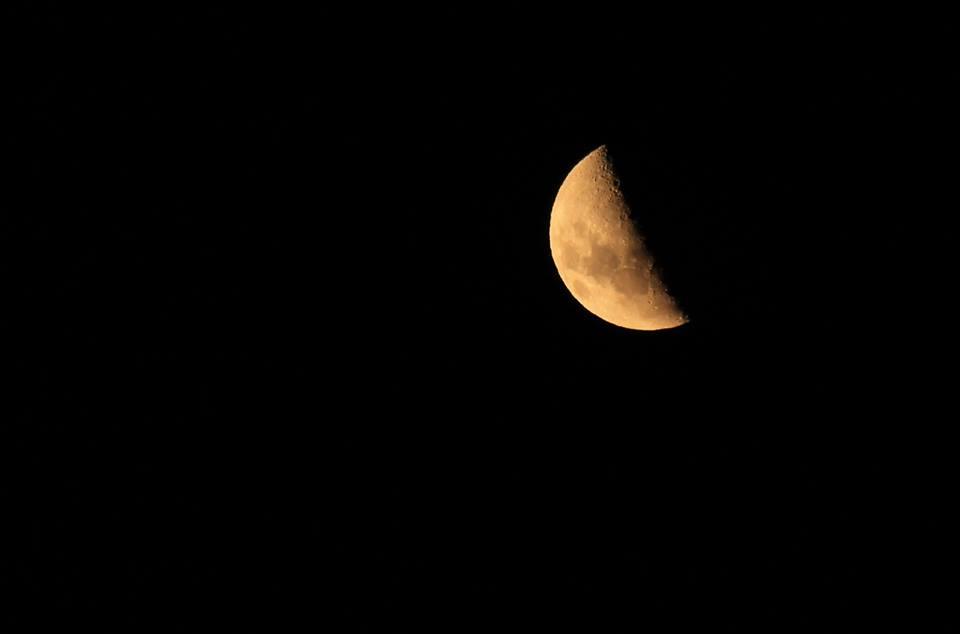 2017-mark-moon
